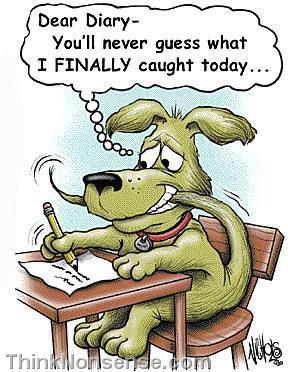 dogdiary
