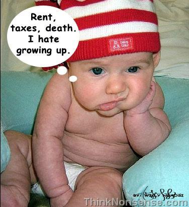rent,taxes,grow-up